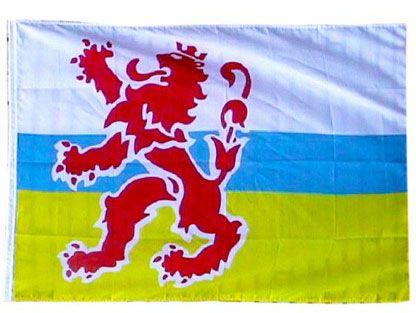 Originele Limburgse vlag met leeuw