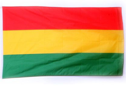 Carnavalsvlag luxe rood geel groen