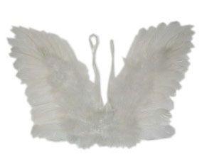 Engelen vleugels witte veren kind