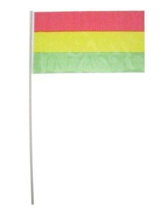 Carnaval 2021 Vlaggetjes op stok rood geel groen
